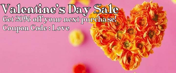 Valentine Day coupon