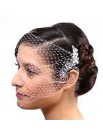 Veil Comb with pearls and rhinestones